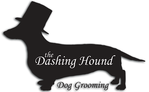 The Dashing Hound